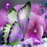 Bezoek de persoonlijke pagina van paragnost helderziende Faith